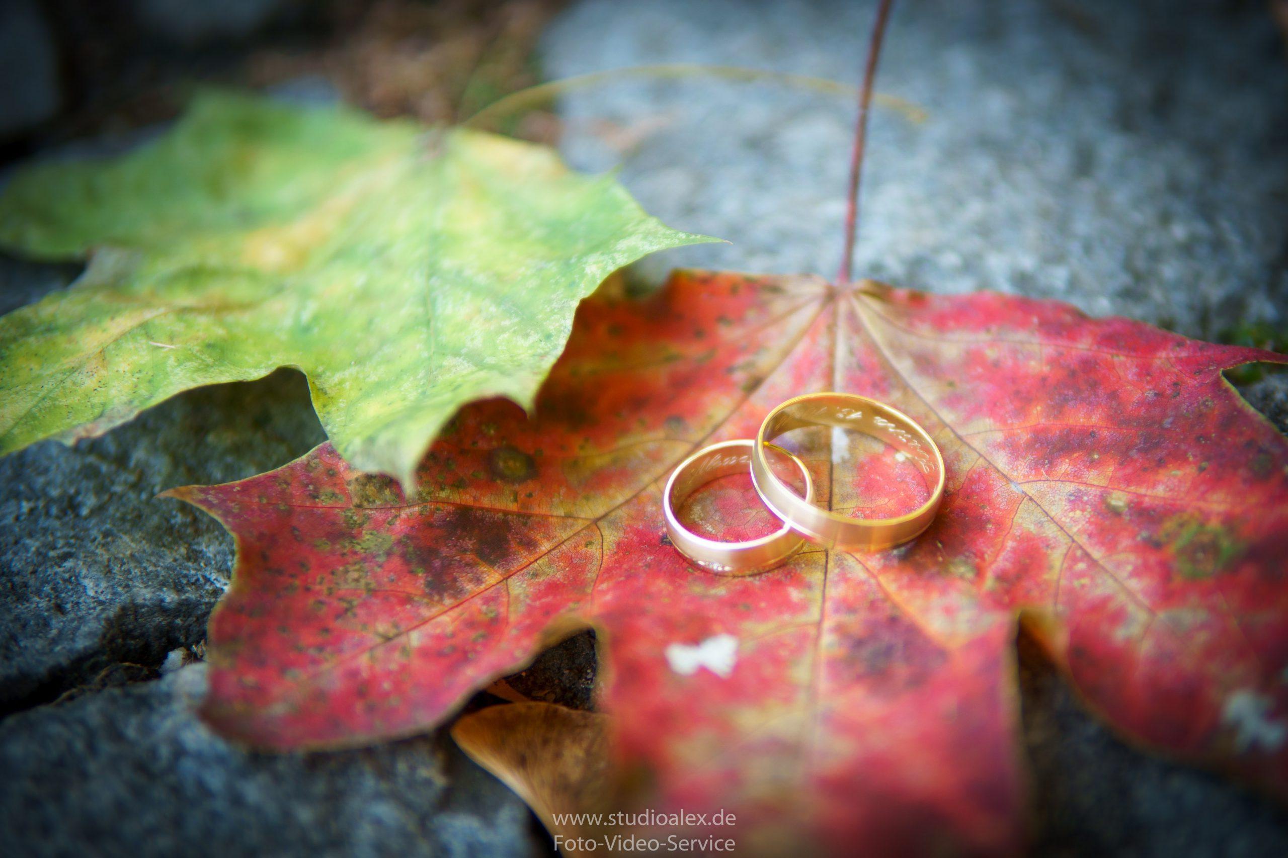Hochzeitsfotograf-Amberg-Hochzeitsfotografie-Amberg-Hochzeitsfotos-Amberg-Hochzeitsbilder-Amberg-Fotograf-Hochzeit-Amberg-06440-scaled.jpg
